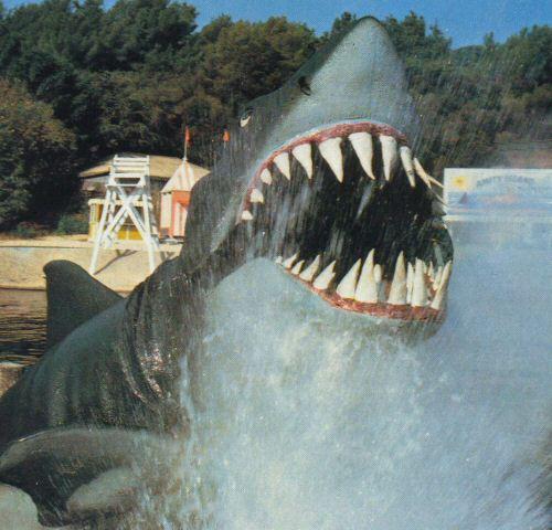 The Studiotour Com Jaws Universal Studios Hollywood