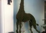 topiary8
