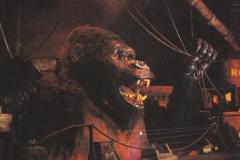 1990_kong2